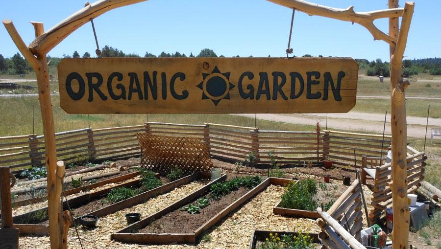 Organic Garden at Zion National Park