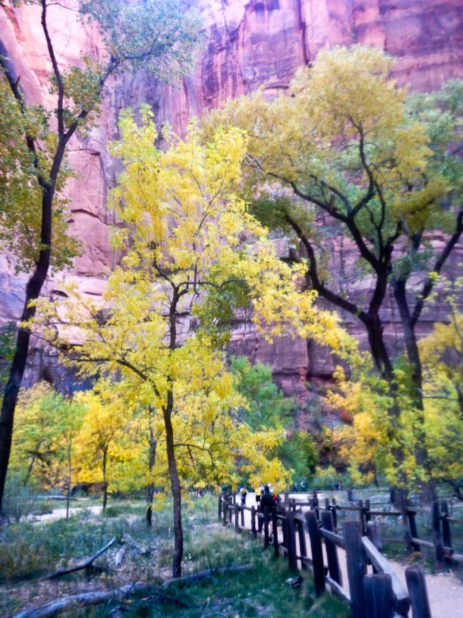 Zion National Park in Autumn