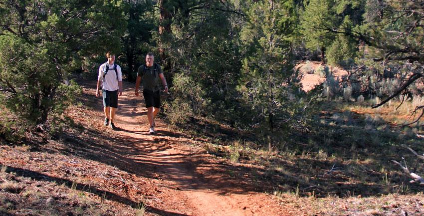 Guided hiking Zion Ponderosa