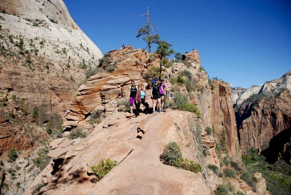 Top Hikes In Zion National Park Infographic Zion Ponderosa