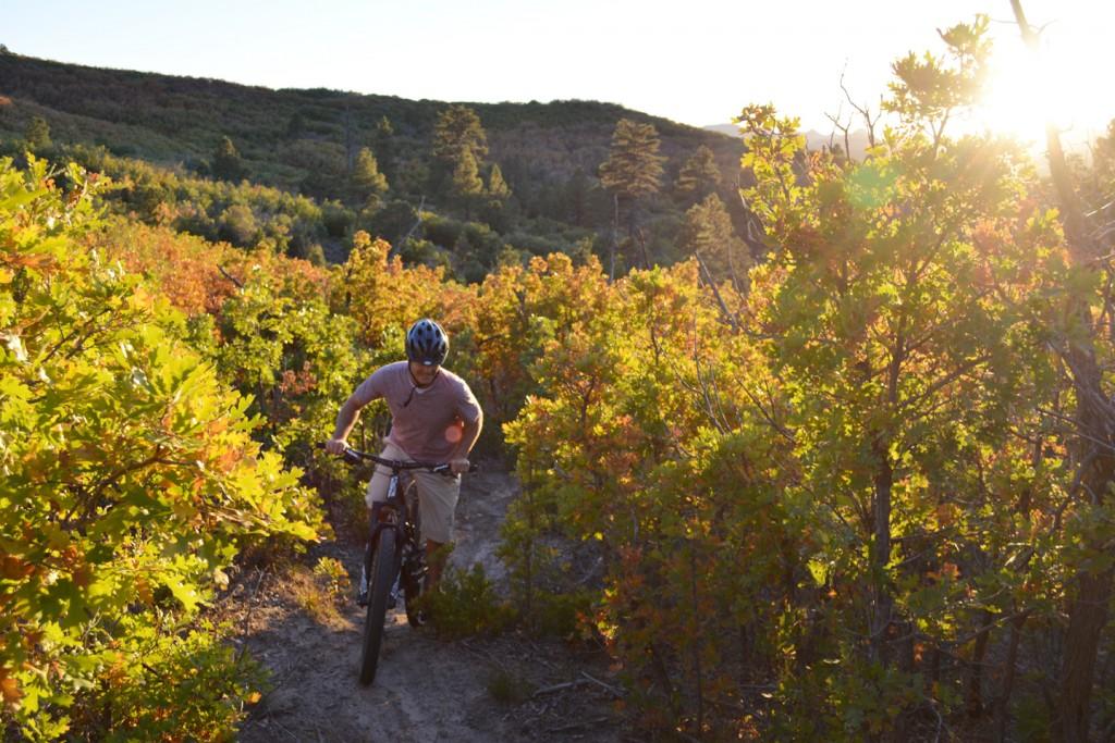 Zion Ponderosa Mountain Biking in Fall