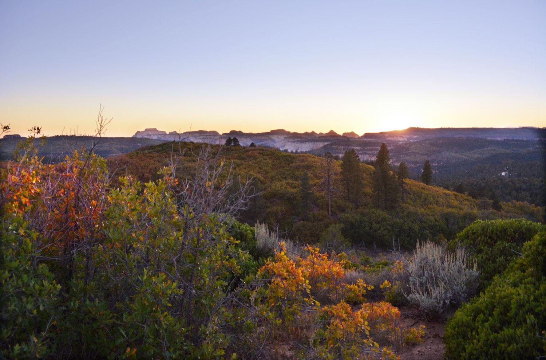 Zion landscape in Fall