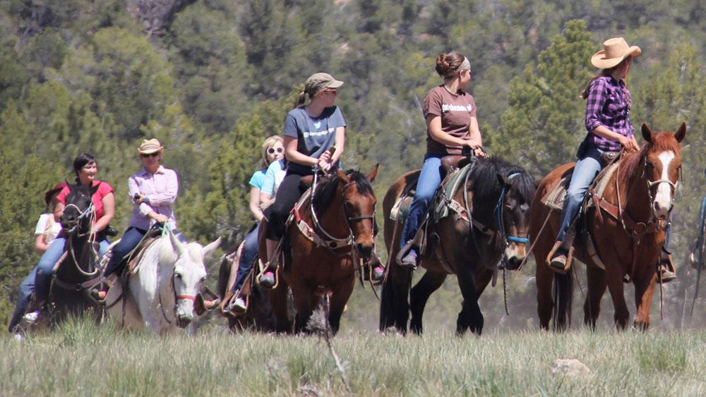 Saddle Up on Horseback in Zion National Park
