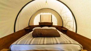 Conestoga Wagon Rentals Near Zion National Park Zion