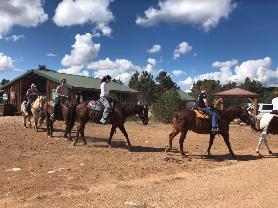 Womens Adventure Retreat Day 1 horseback group
