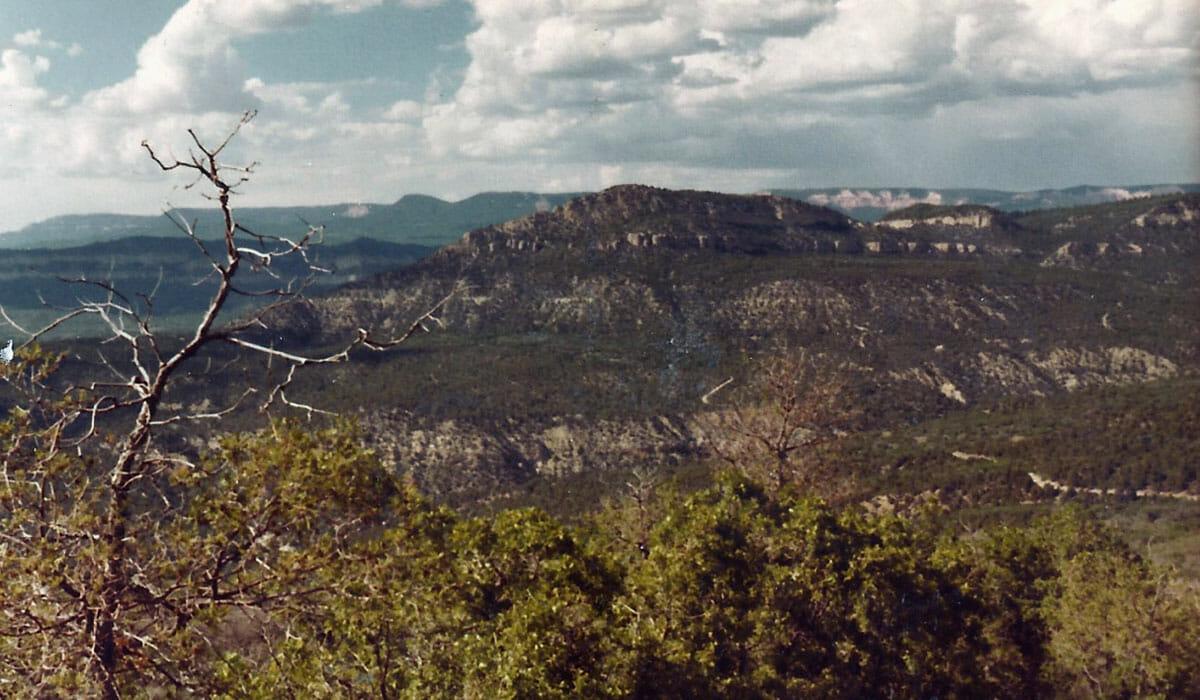 Zion Ponderosa Land View