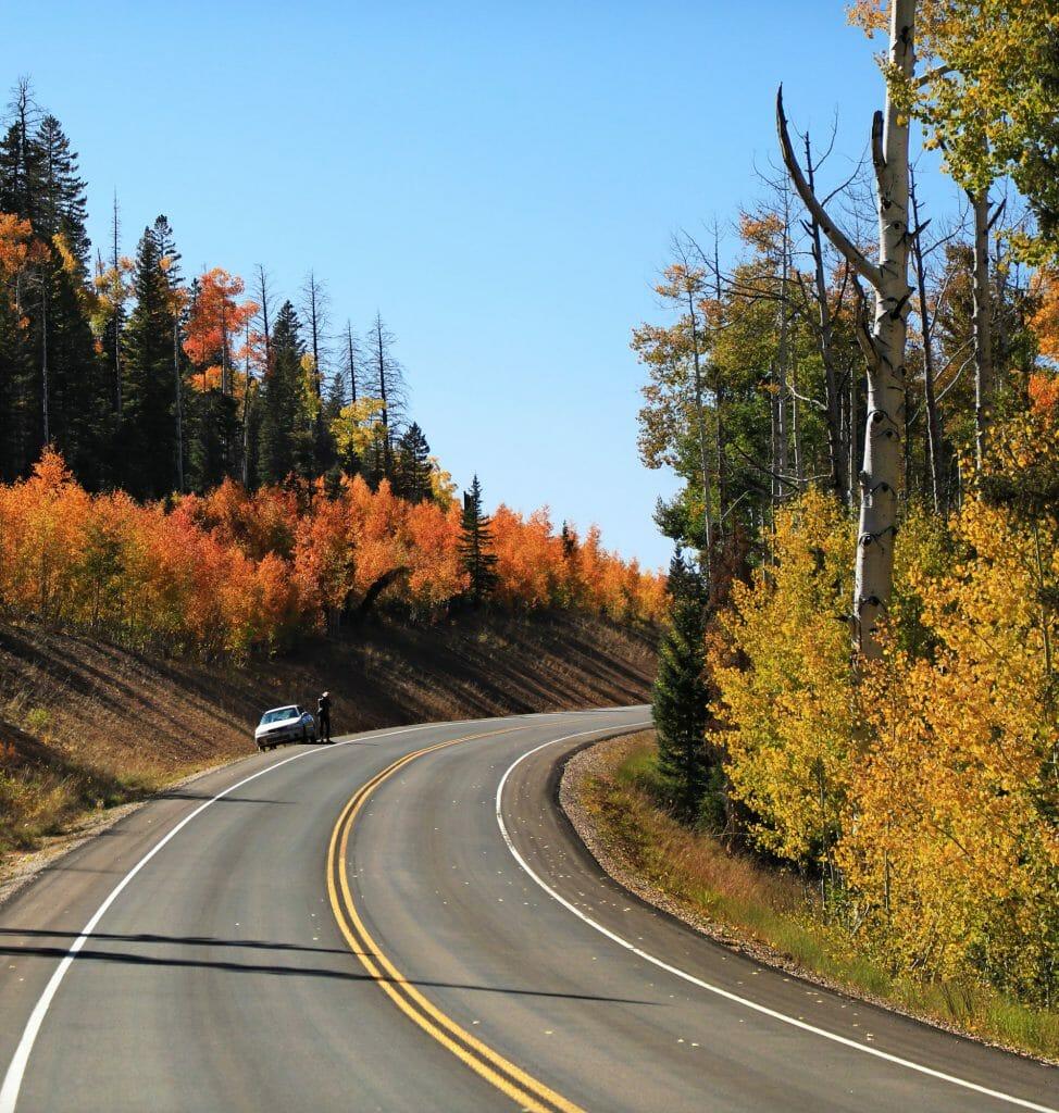 Cedar Mountain road trip